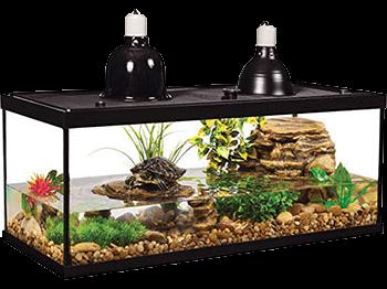 tetra-deluxe-aquatic-turtle-kit
