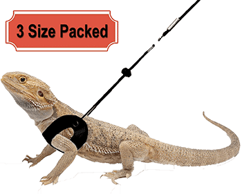 RYPET-3-packs-bearded-dragon-harness-and-leash