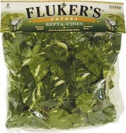 fluker's-repta-vines-for-reptiles